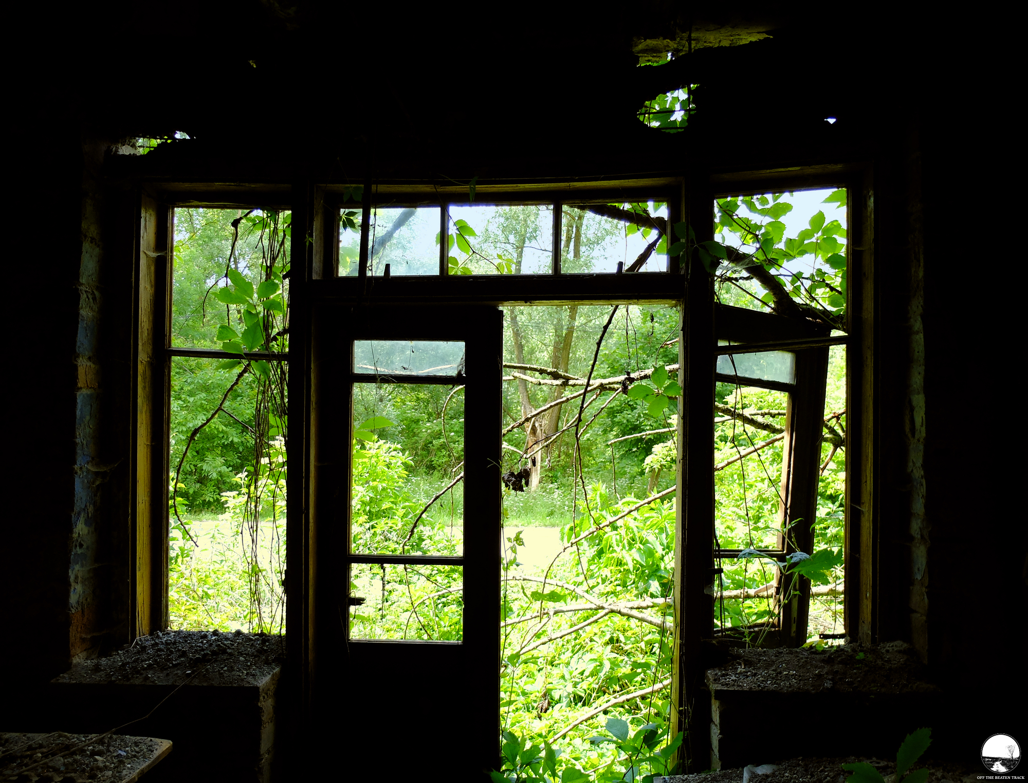 The Abandoned House 'What the Vines Are Hiding' (Poland) - 16