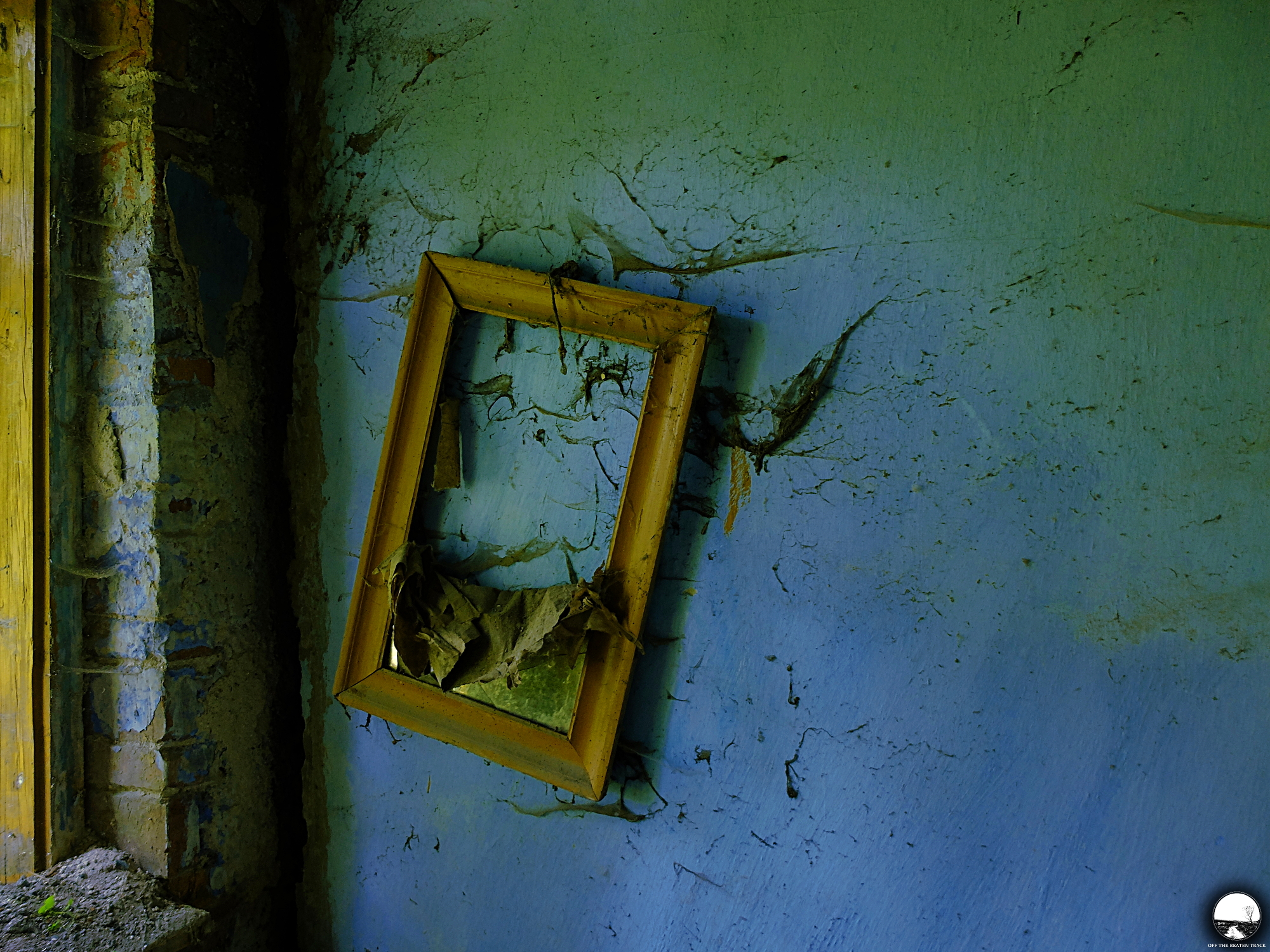 The Abandoned House 'What the Vines Are Hiding' (Poland) - 3.jpg